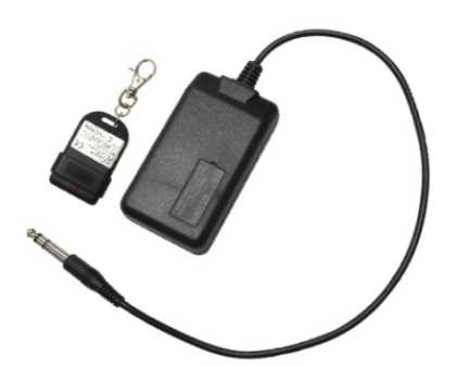 Wireless Remote for B100-WR